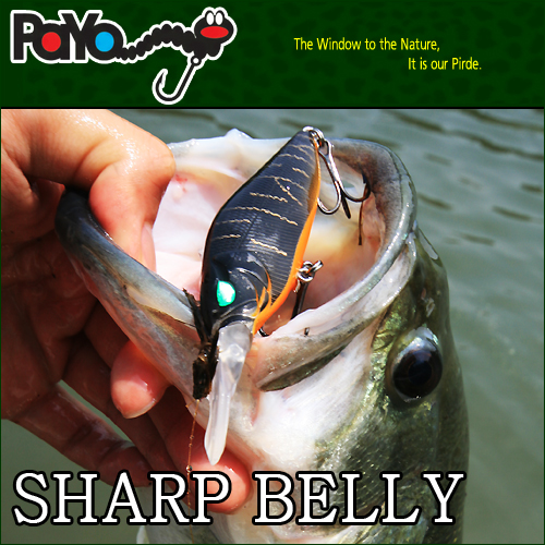 SHARP-BELLY 77mm, 12.5g, Floating
